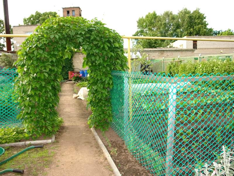 Забор на огороде своими руками