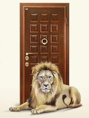 железная дверь своими руками екатеринбург